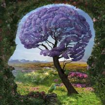 arbol cerebro