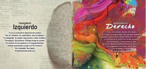 hemisferios-cerebrales-español